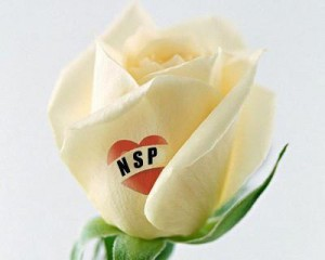 Декоративная косметика компании NSP
