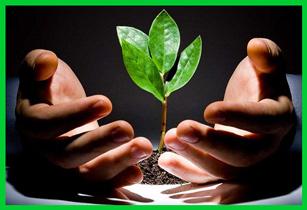Экология и здоровье – бесконечная тема