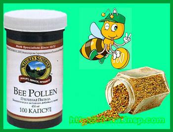 Польза пчелиной пыльцы для здоровья организма