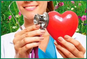 здоровье сердца сосудов
