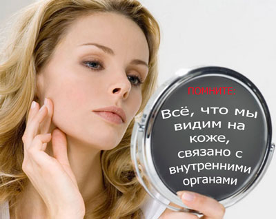 Основные функции кожи