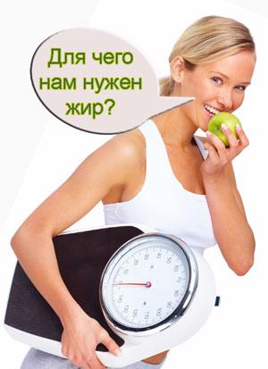 Зачем организму нужны жиры