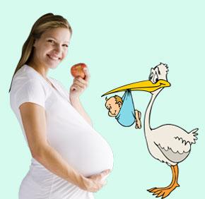 Чем и как питаться будущей маме