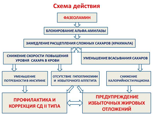Схема действия фазеоламина