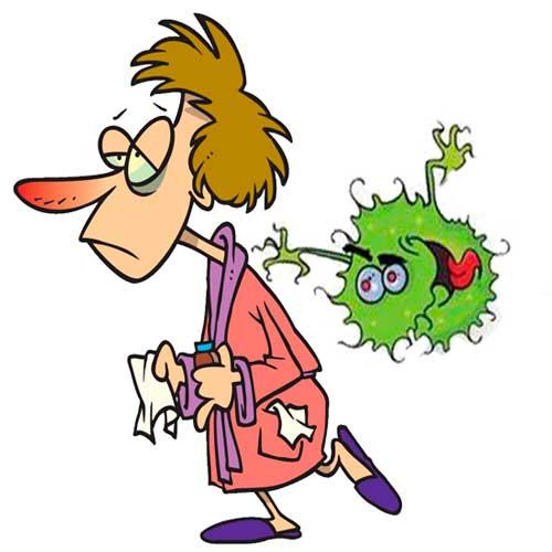 Вирус гриппа. Особенности инфицирования. Профилактика заболевания