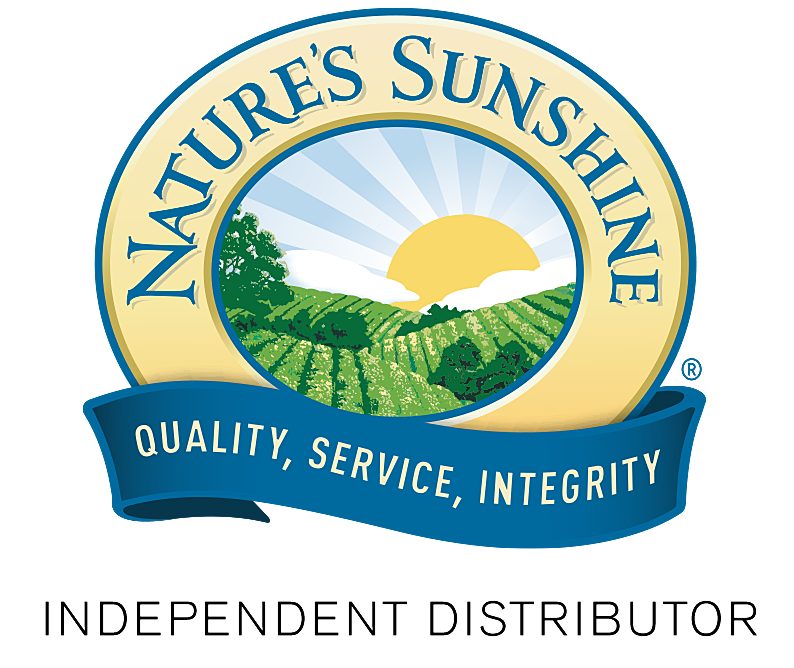 логотип компании НСП