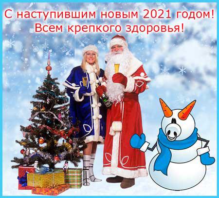 поздравление с наступившим новым годом, новый год